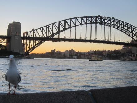 Sydney Bridge Australia