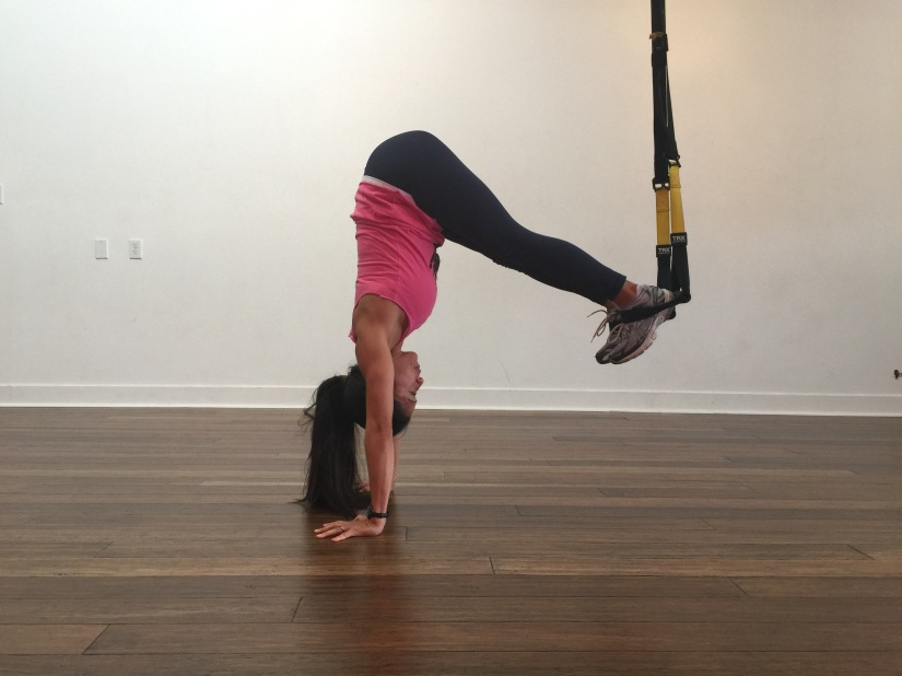 trx core exercises plank to pike